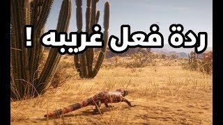 #سوالف : ردة فعل غريبـة حول Red Dead Redemption 2 .. !
