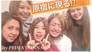 【SP企画】プリマ 原宿に現る!? by PRIMA DONNA
