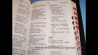 Chinese Holy Bible / Leatherbound with Zipper, Thumb Index, Golden Edges / 126X185