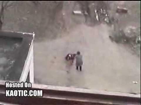 Pitbull Ataca a Su Propia Dueña