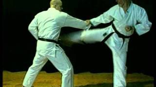 Beginning Wado Ryu Karate