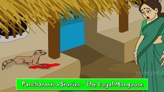 Loyal Mongoose | Panchatantra Hindi Stories | Animated Hindi Stories For Kids | Hindi Kahaniya