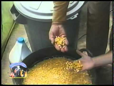 Forraje hidropónico de maíz Granja Integral Dimensional 1