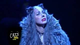Cats Broadway Cast Performs LIVE Medley on 'GMA' - Leona Lewis as Grizabella