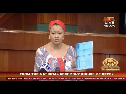 Xxx Mp4 Natasha Akpoti Exposes Conspiracy On Ajaokuta Steel S Revival At The House Of Reps Debate 3gp Sex