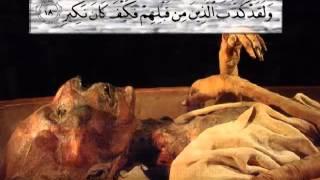 Surah Al Mulk (penyelamat dari AZAB KUBUR) oleh Mishari Al Afasy