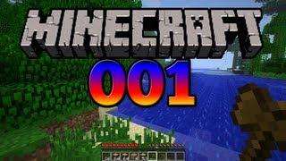 Let's Play Minecraft - Part 1 - Jede Menge Holz vor der Hütte