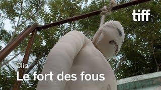 LE FORT DES FOUS Clip | TIFF 2017
