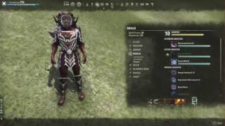 (ESO) Magicka Dragonknight Build | Homestead Update