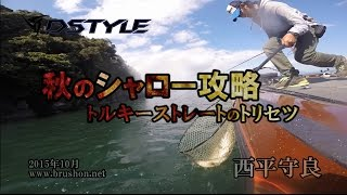 【DSTYLE】秋のシャロー攻略 ~トルキーストレートのトリセツ in 琵琶湖~ 西平守良