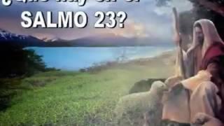 Salmon 23