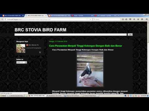 Xxx Mp4 Brc Stovia BF Website 3gp Sex