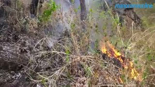 Visuals from Chalakudy wild fire in Thrissur