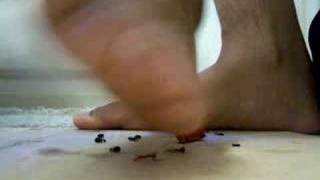 Tiny men at my bare feet