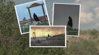 Grim Reaper pays local cemetery a visit?