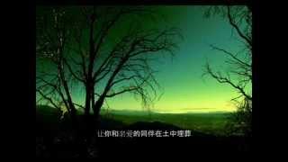 《夏日最后的玫瑰》 爱尔兰民谣-郭淑珍演唱