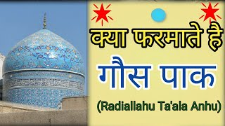 Azhari Miya Par Tauba Hai ll Huzoor Allama Idrees Raza Khan Hashmati ll Hashmati Network