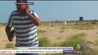 نحلة تلسع مراسل الجزيرة مباشر على الهواء