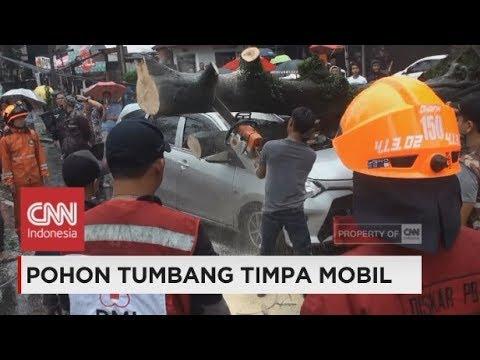 Pohon Tumbang Timpa Mobil, Hujan Deras & Angin Kencang di Bandung
