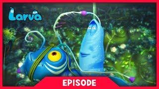 LARVA - LARVATAR - AVATAR LARVA| 2017 Cartoon Movie | Cartoons For Children | 라바 | LARVA Official