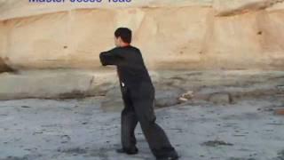 Yang Tai Chi Taiji Fast Form