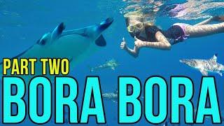 Ivy in Bora Bora: Part Two