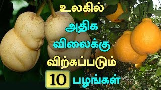 Top 10 Most Expensive Fruits in the World