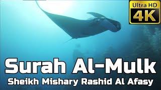 Surah Al Mulk سورة الملك: Sheikh Mishary Al Afasy مشاري العفاسي - English Translation