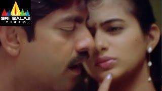 Pellaina Kothalo Songs | Chelivo Video Song | Jagapathi Babu, Priyamani | Sri Balaji Video