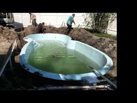 Yellow Mustard Algae In Swimming Pool | Get Rid Of It