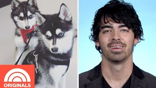 Joe Jonas and Sophie Turner's Puppy Family | My Pet Tale | TODAY ORIGINALS