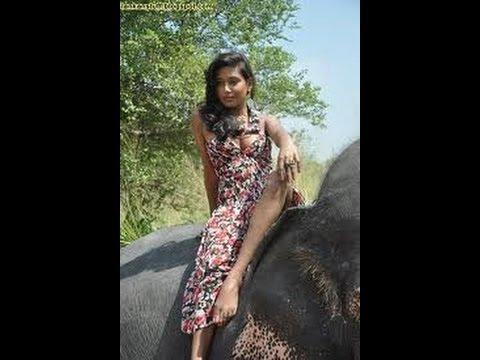 Xxx Mp4 Sri Lanka Hot Girls With Elephent 3gp Sex