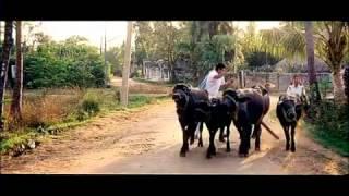 iqbal aashayein full songs