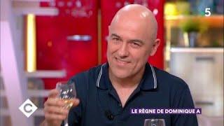 Le règne de Dominique A - C à Vous - 16/03/2018