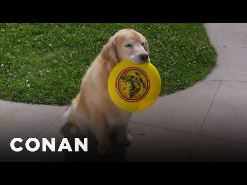 Dogs Can't Be Trusted  - CONAN on TBS