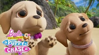 Cute Puppy Eyes | Barbie & Her Sisters in a Puppy Chase | Barbie