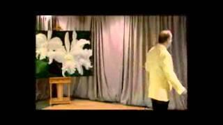 TEDxGlastonbury - Jeffrey Fox - Dollarize or Die