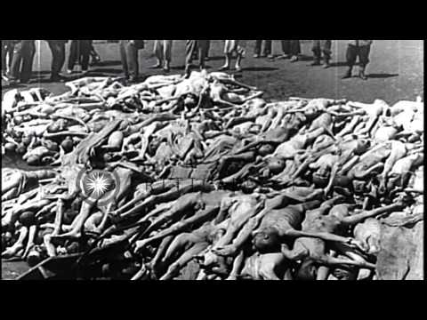 Xxx Mp4 Piled Up Corpses Of Nazi Concentration Camp Victims In Mauthausen Austria HD Stock Footage 3gp Sex