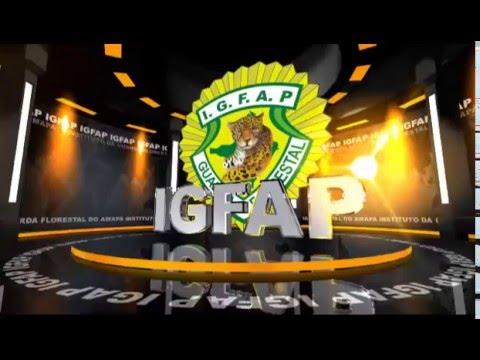 IGFAP Apresentação
