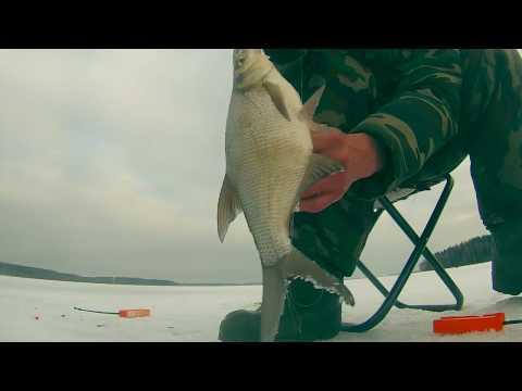 рыбалка летняя на белую рыбу