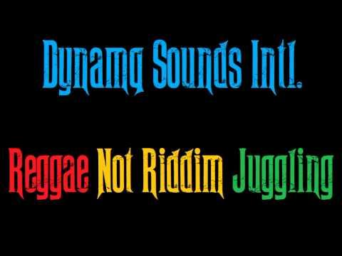 Dynamq Sounds Intl - Reggae Not Riddim Juggling