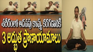 Pranayam For Weight Loss | Yoga For Weight Loss In Telugu | Breathing Exercises | Yoga In Telugu