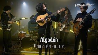 Algodón - Abajo de la luz (Live on PardelionMusic.tv)