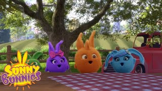 Videos For Kids | SUNNY BUNNIES - YOU HARVEST WHAT YOU SOW | New Episode | Season 3