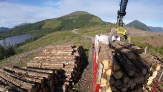 Timber truck loading Ytrehovden, Norway