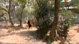 Diabari Harirampur : Vober Hat 7
