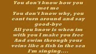 Uncle Kracker follow me lyrics