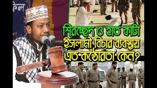 New Bangla Islamic waz by amir hamza ইসলামী বিচার ব্যবস্থা কেমন 18অক্টেবর-2017হাটিকুমরুল, সিরাজগঞ্জ