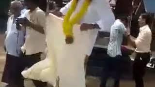 Tamili sadi