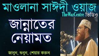 জান্নাতের নেয়ামত। Maulana Delwar Hossain Saidi Waz। Bangla Waj